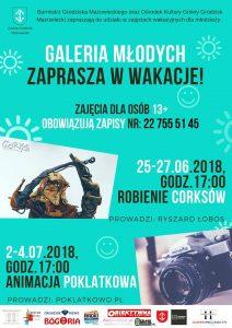 Wasztaty Animacji poklatkowej @ Willa Radogoszcz | Grodzisk Mazowiecki | mazowieckie | Polska