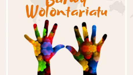 Plakat konkursu Mazowieckie Barwy Wolontariatu - kolorowe dłonie